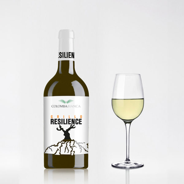 Resilience-Grillo
