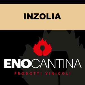 inzolia