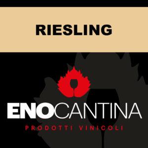 riesling vino sfuso bianco