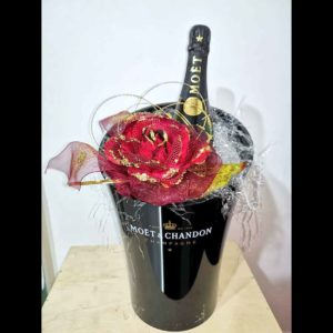 Secchiello Moet & Chandon